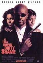 Adi Dedektif (1994) afişi