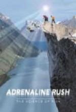 Adrenaline Rush: The Science Of Risk (2002) afişi