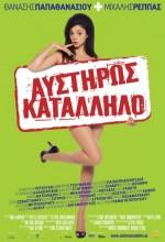 Afstiros Katallilo (2008) afişi