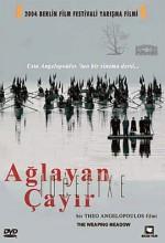 Ağlayan Çayır (2004) afişi