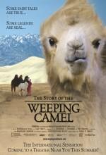 Ağlayan Devenin Öyküsü (2003) afişi