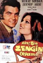 Ah Bir Zengin Olsam (1971) afişi