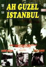 Ah Güzel İstanbul (1966) afişi