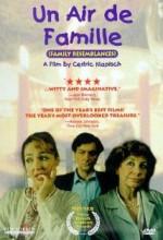 Aile Bağları (1996) afişi