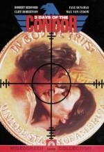 Akbabanın 3 Günü (1975) afişi