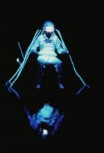 Mindwarp (1992) afişi