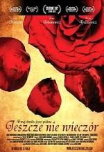 Jeszcze nie wieczór (2009) afişi