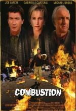 Alevlerin Sırrı (2004) afişi