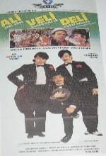 Ali Veli Deli (1996) afişi