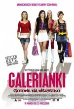 Alışveriş Kızları (2009) afişi