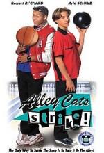 Alley Cats Strike (2000) afişi