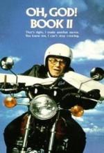 Aman Tanrım 2 (1980) afişi