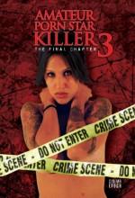 Amateur Porn Star Killer 3: The Final Chapter (2009) afişi