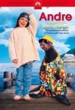 Andre (1994) afişi
