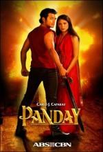 Ang Panday (2009) afişi