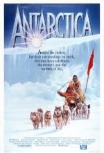 Antarktika (1983) afişi