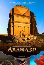 Arabia 3d (2010) afişi