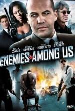 Aramızdaki Düşmanlar (2010) afişi