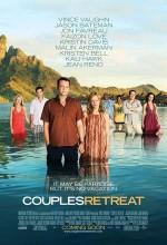 Arızalı Çiftler (2009) afişi