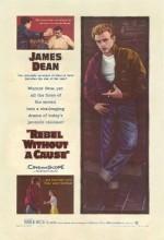 Asi Gençlik (1955) afişi