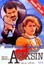 Aşıksın (1988) afişi