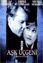 Aşk Üçgeni (1999) afişi