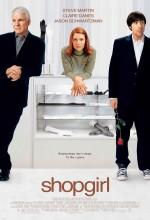 Aşkı Ararken (2005) afişi