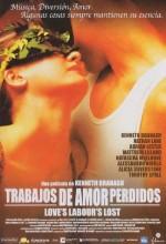 Aşkın Boşa Giden Emeği (2000) afişi