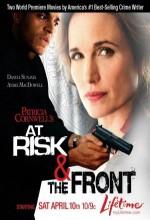 Risk Altında (2010) afişi