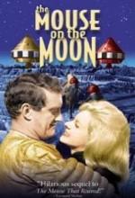 Aydaki Fare (1963) afişi
