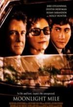 Ayışığında (2002) afişi