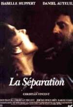 Ayrılık (1994) afişi