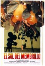 Ayva Ağacının Güneşi (1992) afişi