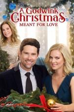 A Godwink Christmas: Meant for Love (2019) afişi