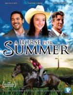 A Horse for Summer (2015) afişi