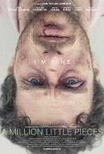 A Million Little Pieces (2018) afişi