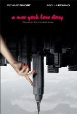 A New York Love Story (2013) afişi