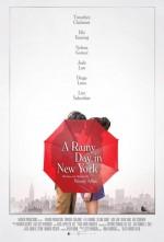 New York'ta Yağmurlu Bir Gün (2018) afişi