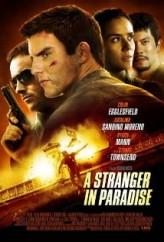 A Stranger in Paradise (2013) afişi