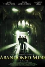 Abandoned Mine (2013) afişi