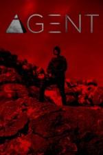 Agent (2017) afişi