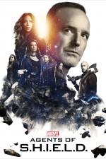 Agents of S.H.I.E.L.D Sezon 5 (2017) afişi
