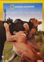 Amansız Düşmanlar: Aslanlar ve Bufalolar (2006) afişi