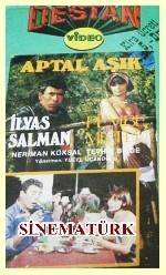 Aptal Aşık (1988) afişi