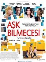 Aşk Bilmecesi (2013) afişi
