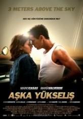 Aşka Yükseliş (2010) afişi