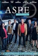 Aspe Sezon 8 (2011) afişi
