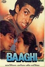 Baaghi (2000) afişi