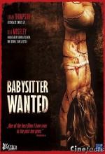 Babysitter Wanted (2008) afişi