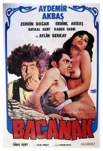 Bacanak (1979) afişi